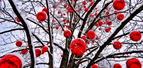 Risultati lancia la sfida Gennaio 2013 – Il rosso