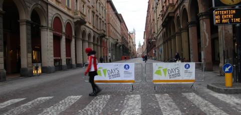 Reportage Succede a Bologna di Liviana Lanzoni