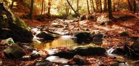 Trekking fotografico – I colori dell'autunno alle cascate del Dardagna – 27 ottobre 2013