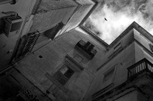 Foto di Silvia Bonsi
