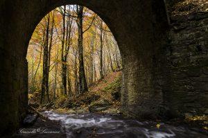 02_Ponte_Graziella_Luccarini