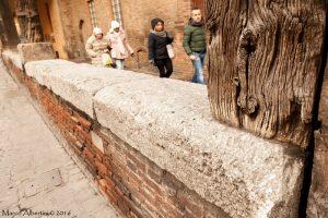 Selenite Palazzo Grassi - Foto di Marco Albertini