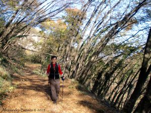Lungo il Sentiero dei Gessaroli