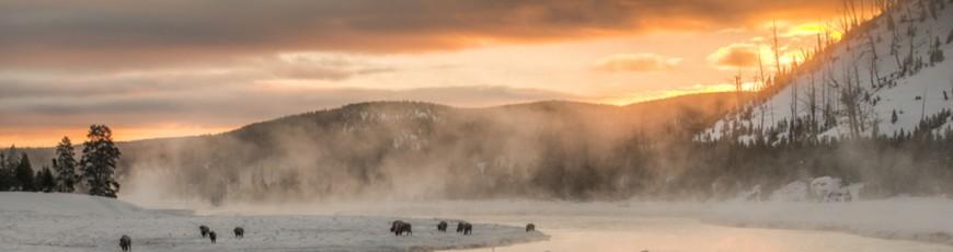 Yellowstone Winter con Max Venturi e Stefano Quirini – 8 giugno 2016