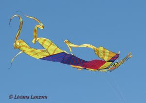 Liviana Lanzoni - L'aquilone
