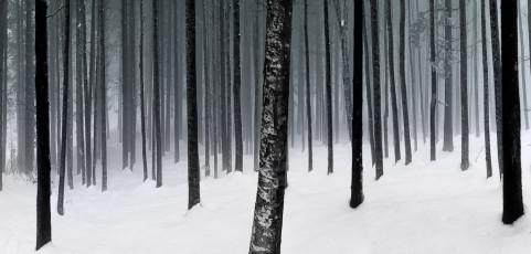 Resoconto lancia la sfida Febbraio 2017 – Inverno: luci e colori